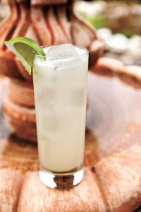 Paloma Cocktail Pic